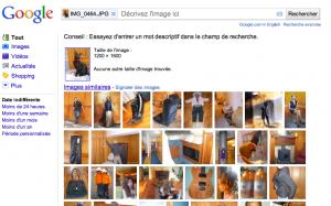recherche image chat noir fond orange