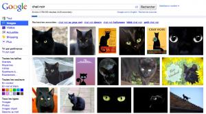 recherche images chat noir