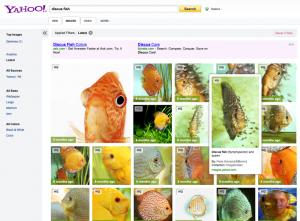 interface recherche dimages yahoo
