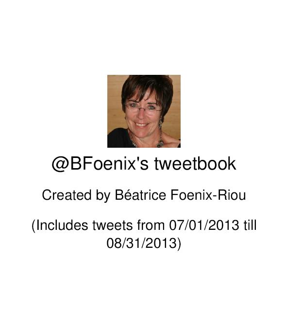 Outils pour le twitteur veilleur : Tweetbook