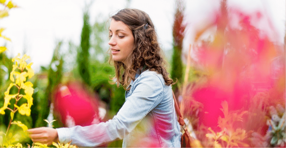 Amaya Happy Plantes crowdfunding